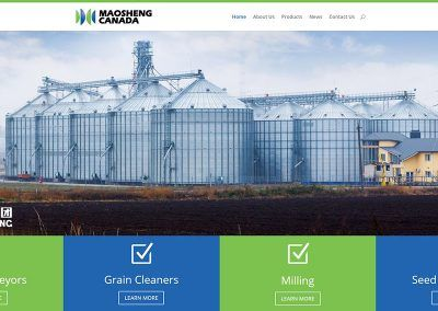 Website Design – Maosheng Canada