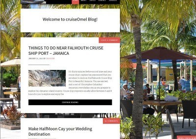 Website Design – Cruise Project