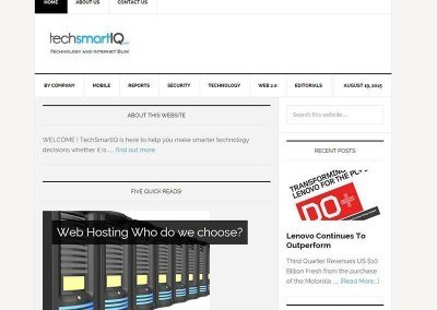 Website Design- TechSmartIQ